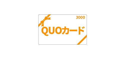 ビジネス応援QUOカード3,000円<朝食なし>】
